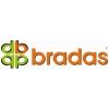Оптом Шланг поливочный Bradas Gold Line,  Lime Edition.